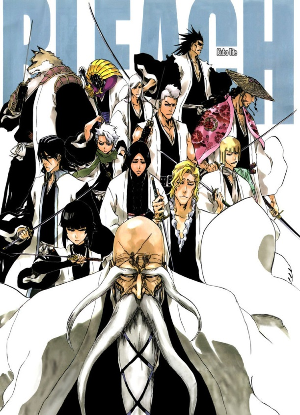 Bleach Chapter 494 - cover