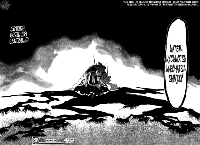 Bleach chapter 647 - Kyouraku's Bankai